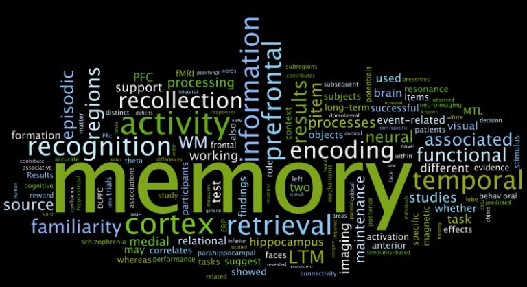 Mieux étudier (1): le fonctionnement de la mémoire